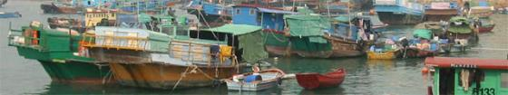 Junks in Cheung Chau typhoon shelter
