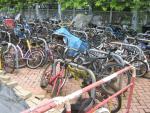 Bike graveyard